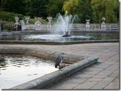 2011 London Hyde Park 004